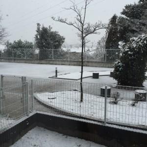 1月30日雪